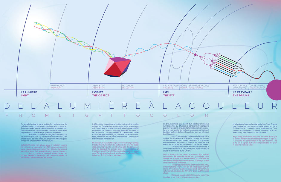 brochure design, layout, typography, color perception